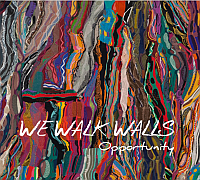 We Walk Walls Cover