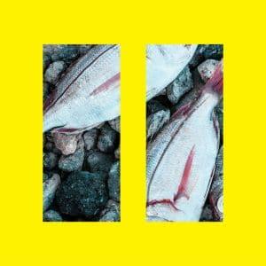 Albumcover II