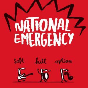 Albumcover National Emergency
