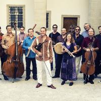Bild Chameleon Orchestra
