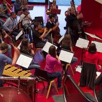 Bild Tiroler Kammerorchester Innstrumenti