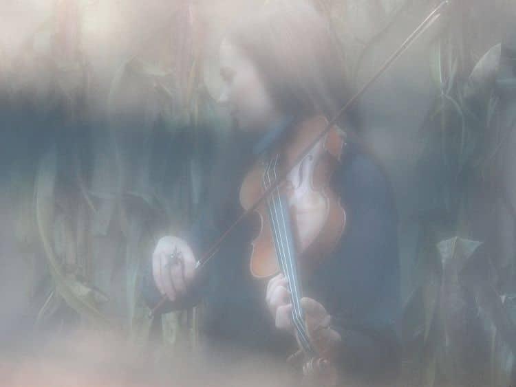 Bild Meriheini Luoto