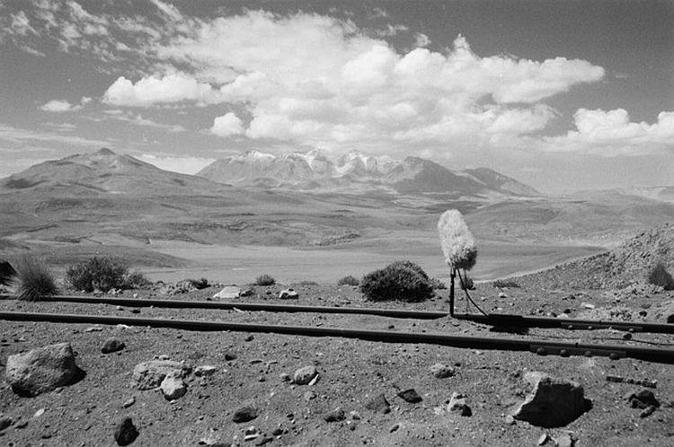 Bild Mikro Wüste