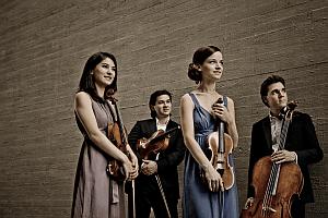 Bild Minetti Quartett