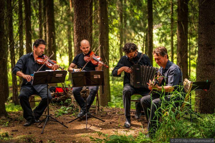 Bild Neue Wiener Concert Schrammeln